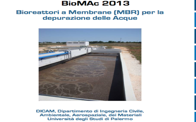 Biomac 2013