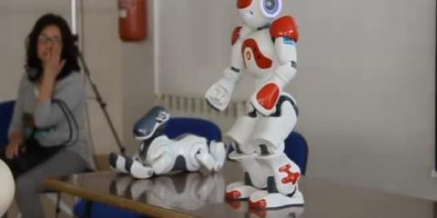 Amico Robot