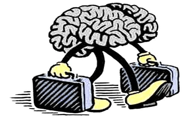 cervelloinfuga