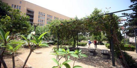 giardino di freud all'università