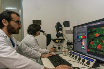 ricercatori